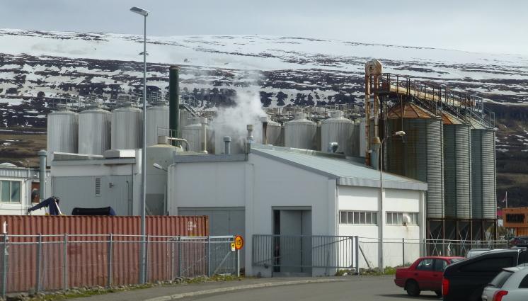 Einstök Ölgerð, Akureyri, Bier in Island, Bier vor Ort, Bierreisen, Craft Beer, Brauerei