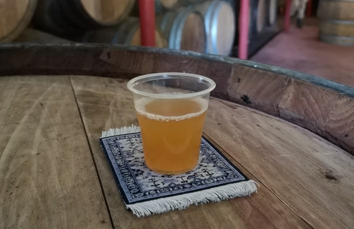 Brouwerij Timmermans, Itterbeek, Bier in Belgien, Bier vor Ort, Bierreisen, Craft Beer, Brauerei, Brauereimuseum