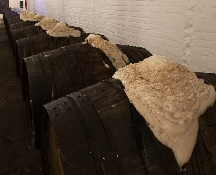 Brouwerij Timmermans, Itterbeek, Bier in Belgien, Bier vor Ort, Bierreisen, Craft Beer, Brauerei, Toer de Geuze