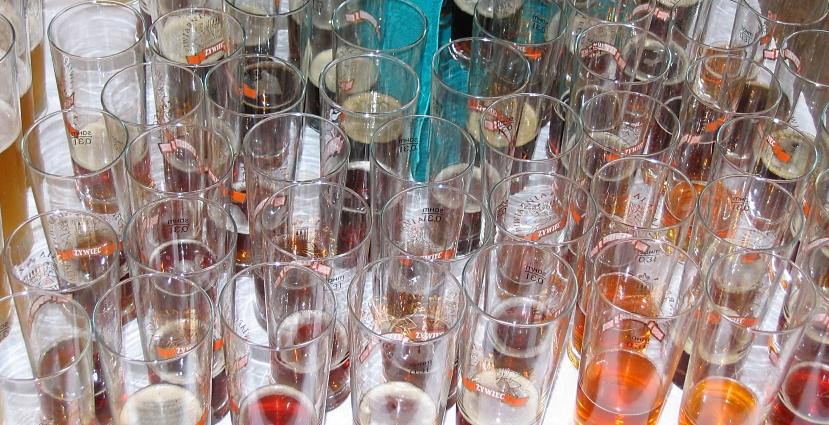 V Konkurs Piw Domowych, Żywiec, Bier in Polen, Bier vor Ort, Bierreisen, Craft Beer, Brauerei, Bierfestival, Hausbrauertreffen
